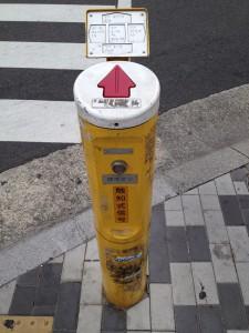 福岡では、あまり見かけないですね...