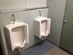 パッと見、普通のトイレ...